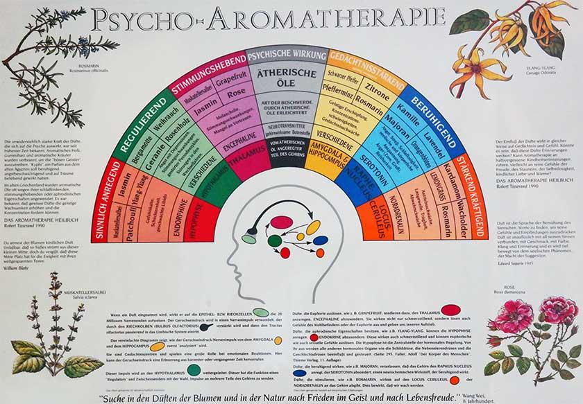 Psycho-Aromatherapie kleines Bild
